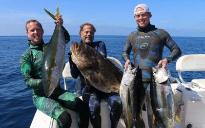 Spearfishing in Magdalena Bay