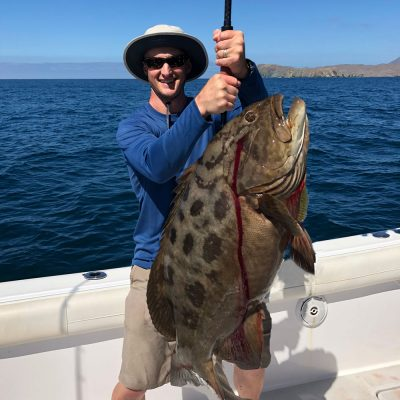 MagBay Grouper