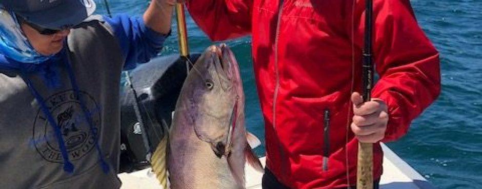 mag bay white sea bass