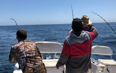 Magdalena Bay Fishing Trip July 2018