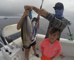 Magdalena bay Yellowfin Tuna